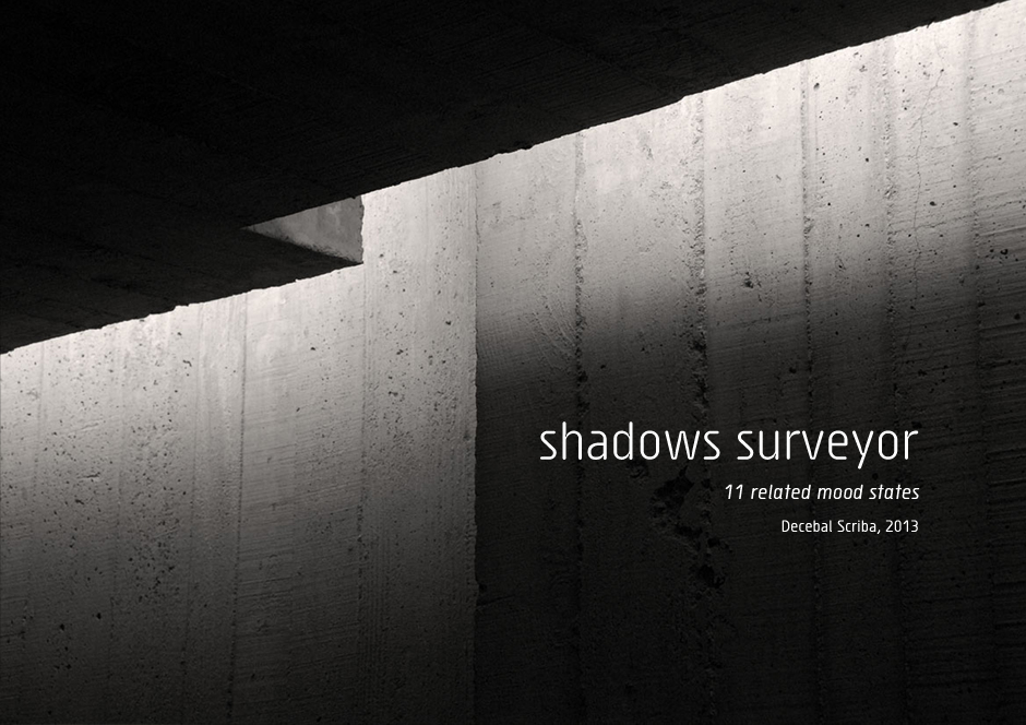 ds_shadows-surveyor-1